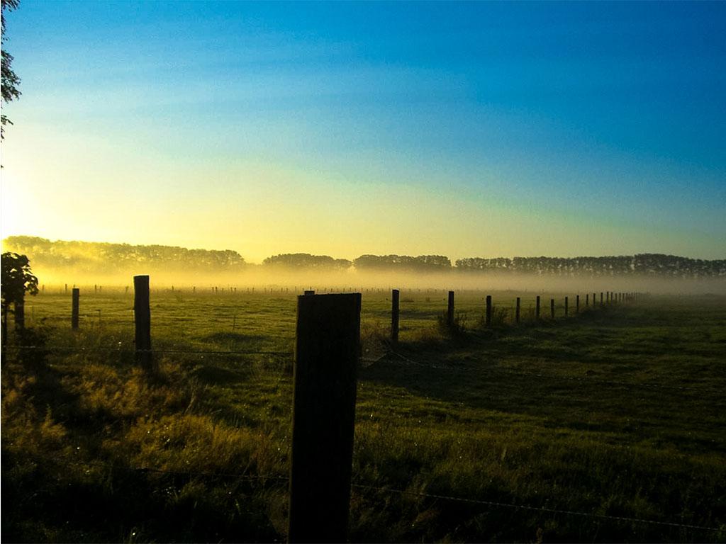 Morgenstimmung auf der MQ Ranch bei 14 ha Outdoor-Flächen