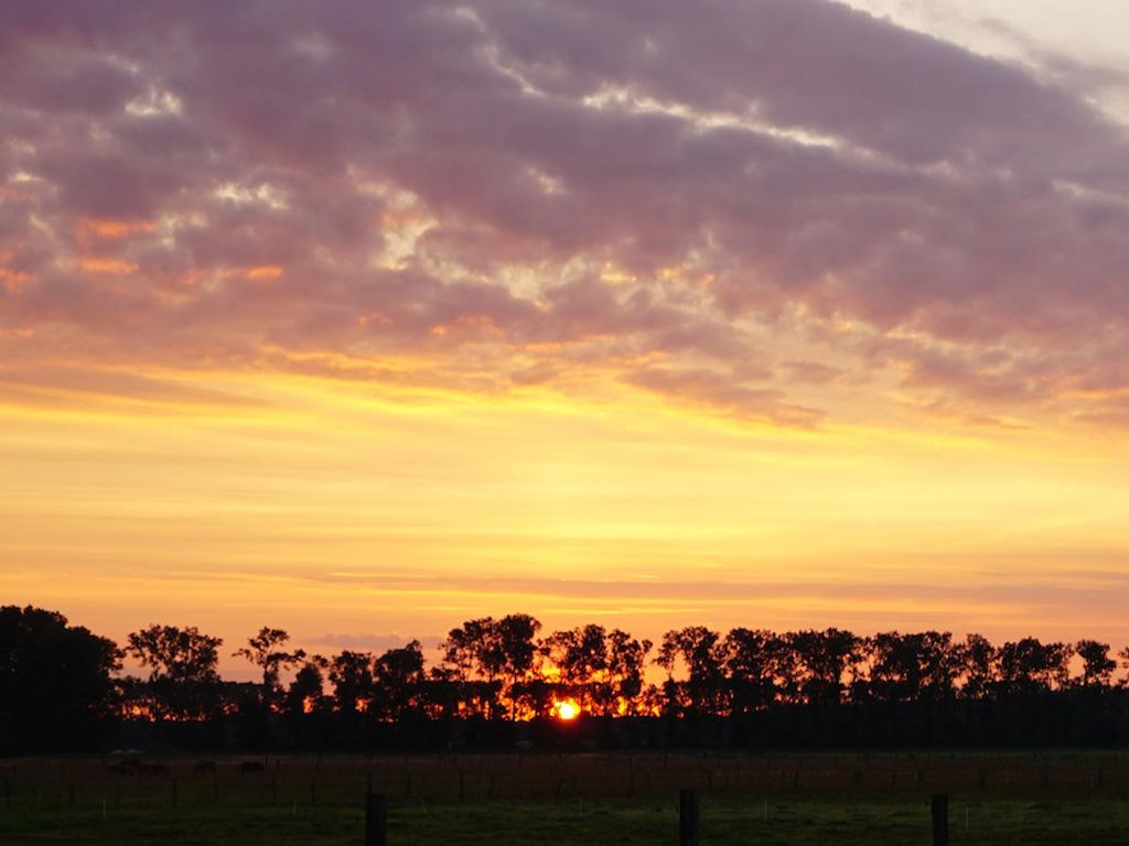 Sonnenuntergang auf der MQ Ranch