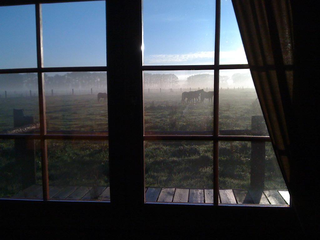 Blick aus dem Schlafzimmerfenster: So werden Sie auf der MQ Ranch geweckt!